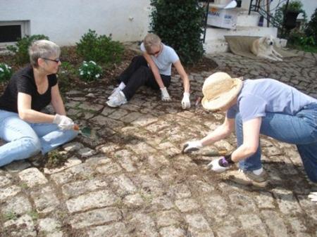 Anne Arundel Women Giving Together, Volunteer Project